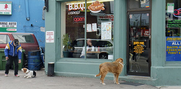 Dogs and Signs. Toronto. April, 2009