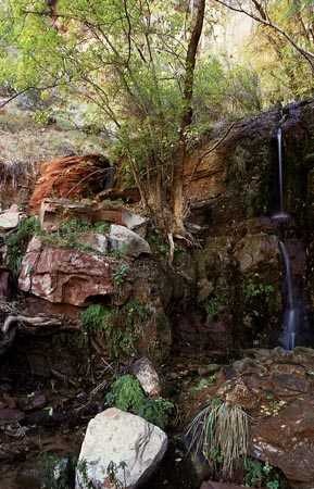 Hidden Waterfall - Zion N.P.