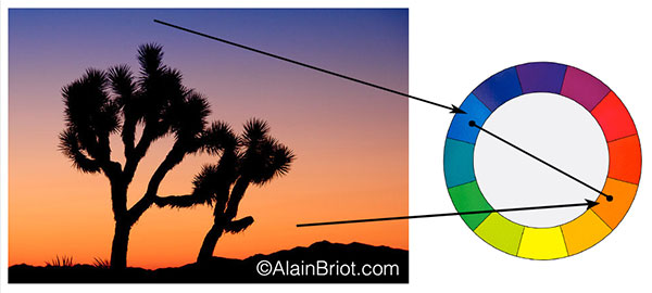 Complementary Colors Example 2 Joshua Tree Sunrise