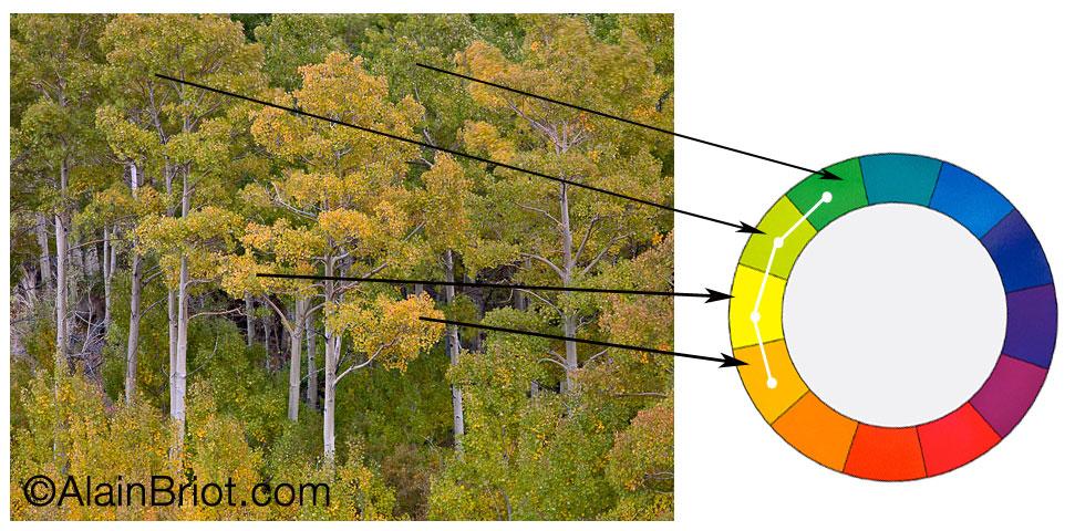 color harmonies 3 analogous and triadic luminous landscape