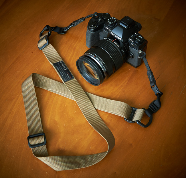 dsptch strap with camera