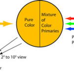 Observing and Managing Color: Dealing with Color Vision Anomalies