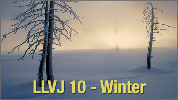 LLVJ10_600x338