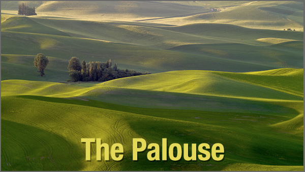 Palouse_600x338