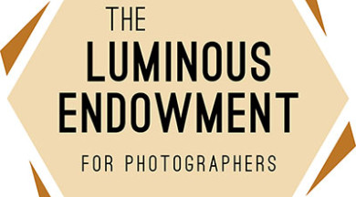Luminous Endowment Granted Charitable Status