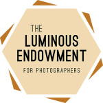 Endowment Winners and New Grants