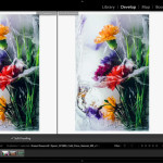 Soft Proofing In Lightroom – Tutorial With Jeff Schewe & Kevin Raber
