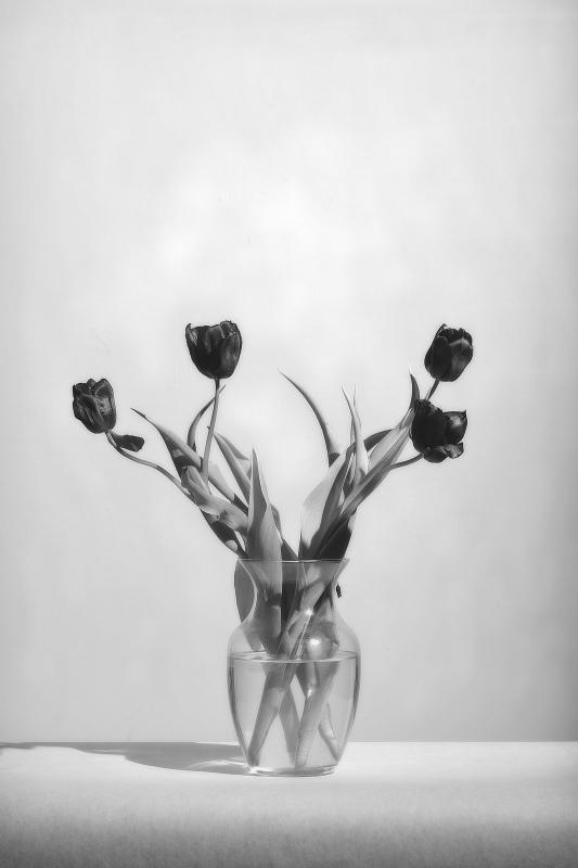 vase of tulips