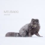 Melrakki – A Book Review