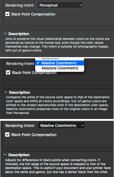 Figure 7 Rendering Intents Defined in Adobe Photoshop