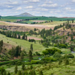 In The Palouse – Luminous-Landscape's Palouse Workshops