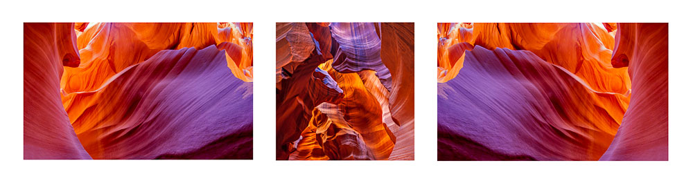 Antelope Color Triptych #6