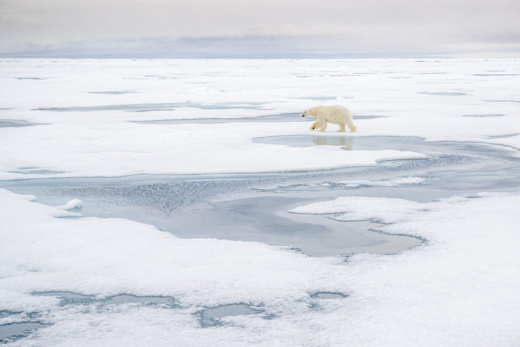 Svalbard. Wide Lens.