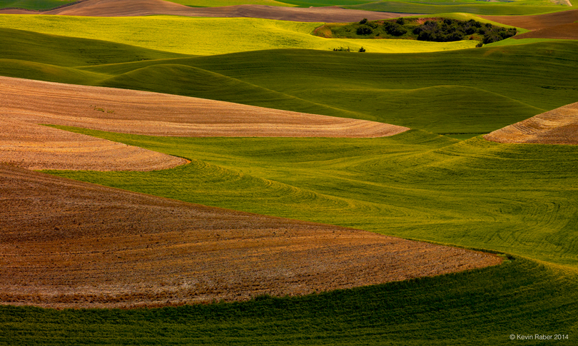 Shapes In The Landscape