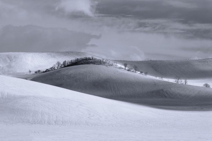 Snow Hokkaido