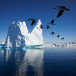 2019 Antarctica – Hebridean Sky – Antarctica Photographic Experience