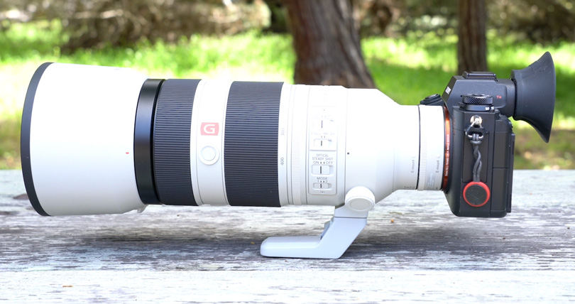 The Sony a9 with the 100-400mm G-Master Lens