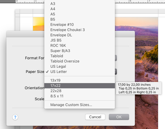 The paper size options in the Print Setup dialog box.