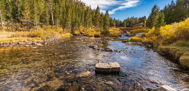Rock Creek, Eastern Sierras north of Bishop, CA