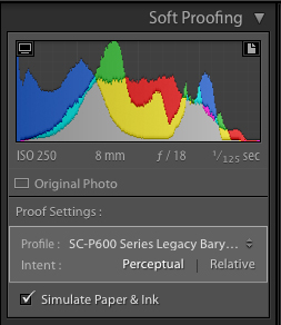 The histogram and the soft proofing palette AFTER clicking on the Create Proof Copy button