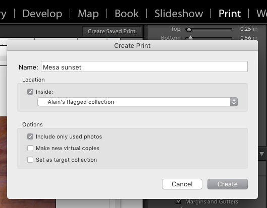 The Create Saved Print dialog box at top right.